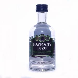 2 Ginebra - Ginebra Gin Liqueur Hayman´s 1820 5cl